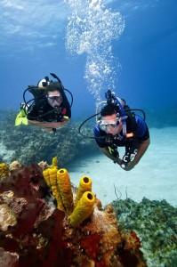 Be a Buoyancy Expert
