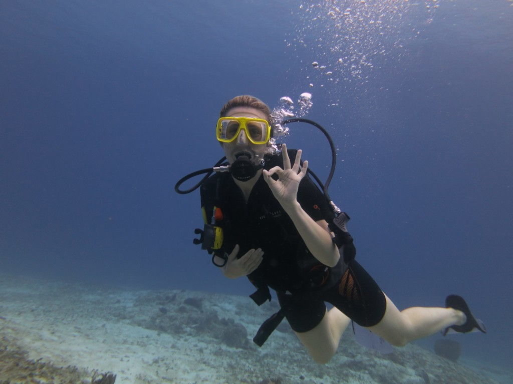 Ecodivers Ecology Diving In Cozumel